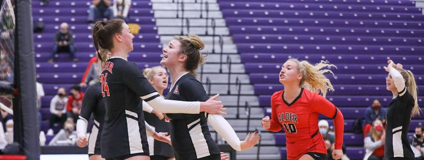 Volleyball players celebrating